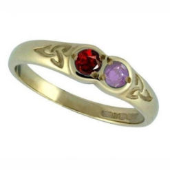 Family Colours Two Stones Ring Gold