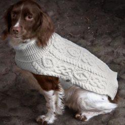 Aran Knit Merino Dog Sweater Buttoned