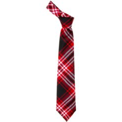 Tweedside District Modern Tartan Wool Necktie