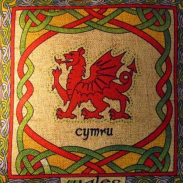 Close Up Welsh Weave Pillow Cover 12 x 12