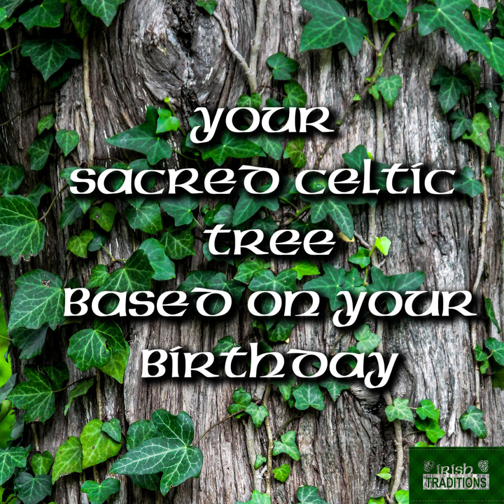 Your Celtic Tree Birthstones and Astrological Signs