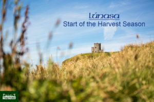 Lúnasa Lughnasadh Harvest By Laurent Perren Field with Castle Image Royalty Free Lughnasadh Lunasa