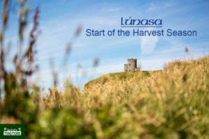Lúnasa Lughnasadh Harvest By Laurent Perren Field with Castle Image Royalty Free Lughnasadh Lunasa