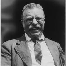 Teddy Bullmoose Roosevelt